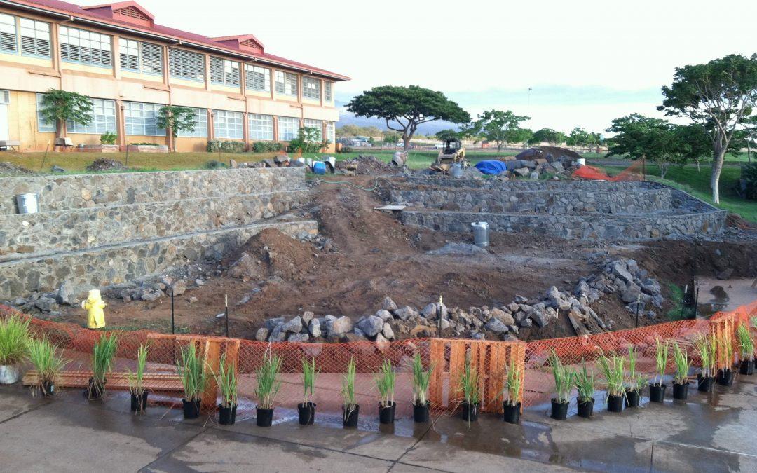 lokelani intermediate school grow some good school gardens