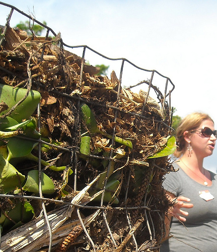 Work & Learn Day This Sat. | Bokashi Compost Workshop