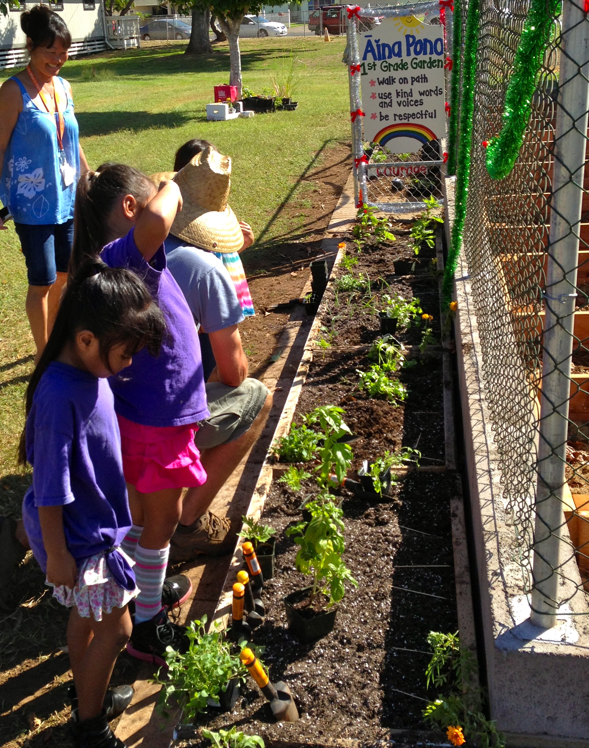New Gardens Sprout at Kahului Elementary School