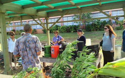 Summer School Garden Tours