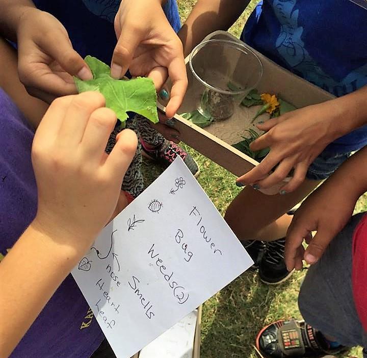 Garden Scavenger Hunt at Kahului Elementary
