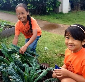 Growing Food and Inspiring Healthy Eating