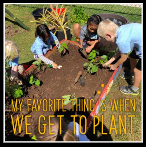 2019 School Garden Survey